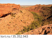 Kings Canyon with woodland in valley. Watarrka National Park, Northern Territory, Australia. 2008. Стоковое фото, фотограф Enrique Lopez-Tapia / Nature Picture Library / Фотобанк Лори