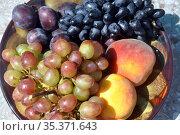 Дары Кубани. Блюдо с фруктами на солнце. Крупный план. Стоковое фото, фотограф Ирина Быстрова / Фотобанк Лори
