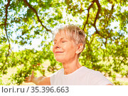 Senior Frau mit geschlossenen Augen bei einer Atemübung und Meditation... Стоковое фото, фотограф Zoonar.com/Robert Kneschke / age Fotostock / Фотобанк Лори
