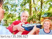 Senioren verteilen Boule Kugeln für einen Wettkampf im Sommer im ... Стоковое фото, фотограф Zoonar.com/Robert Kneschke / age Fotostock / Фотобанк Лори
