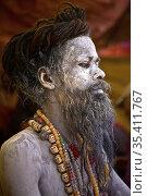 Les sÄdhu shivaïtes frottent leur corps avec des cendres, symboles... Стоковое фото, фотограф Bruno Colliot / age Fotostock / Фотобанк Лори