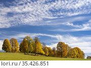 Autumn landscape of Dachstein region, Austria. Стоковое фото, фотограф Richard Semik / easy Fotostock / Фотобанк Лори