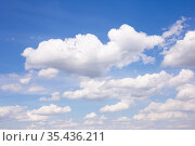 cumulus clouds against blue sky. Стоковое фото, фотограф Татьяна Яцевич / Фотобанк Лори