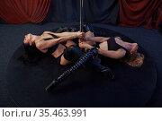 Two beautiful striptease dancers, pole dance. Стоковое фото, фотограф Tryapitsyn Sergiy / Фотобанк Лори