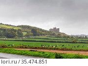 View of Rock of Cashel from highway, Ireland. Стоковое фото, фотограф Zoonar.com/Boris Breytman / easy Fotostock / Фотобанк Лори