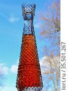 Графин с витаминным напитком из ягод калины на фоне весеннего неба. Стоковое фото, фотограф Владимир Литвинов / Фотобанк Лори