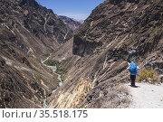 Trekking in Colca Canyon, Peru. Стоковое фото, фотограф Matthew Williams-Ellis / age Fotostock / Фотобанк Лори