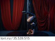 Sexy showgirl, pole dance, striptease. Стоковое фото, фотограф Tryapitsyn Sergiy / Фотобанк Лори