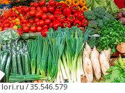 Porree, Paprika und Tomaten zum Verkauf auf einem Markt. Стоковое фото, фотограф Zoonar.com/elxeneize / easy Fotostock / Фотобанк Лори