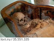Istanbul, Turkey - March 21, 2019: Mummy skull of Sidonian King at... Стоковое фото, фотограф Zoonar.com/Ruslan Gilmanshin / easy Fotostock / Фотобанк Лори