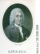 Linnaeus (Carl von Linne - 1707-1778). Swedish naturalist and physician... Редакционное фото, агентство World History Archive / Фотобанк Лори