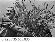 Female collectivew farmer smiling as she holds a sheaf of newly-harvested... Редакционное фото, агентство World History Archive / Фотобанк Лори