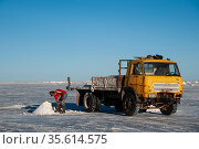 Workman collecting salt for processing, on the Salar de Uyuni, Bolivia. The Salar is the world's largest salt flat, at over 10500 square kilometers. March. Стоковое фото, фотограф John Shaw / Nature Picture Library / Фотобанк Лори