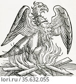 'The Phoenix, a fabulous bird which at the end of life makes a nest... Редакционное фото, агентство World History Archive / Фотобанк Лори