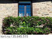 French Windows with Open Wooden Shutter Decorated with Fresh Flowers. Стоковое фото, фотограф Zoonar.com/gkuna / easy Fotostock / Фотобанк Лори