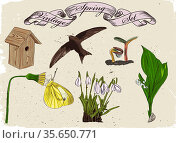 Vintage set of spring elements. Vector illustration EPS8. Стоковое фото, фотограф Zoonar.com/yunna gorskaya / easy Fotostock / Фотобанк Лори