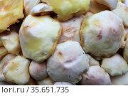 Маслята , очищенные для жарки. Стоковое фото, фотограф Анатолий Матвейчук / Фотобанк Лори