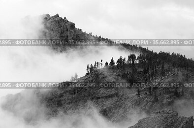 Gran Canaria, landscape of the central part of the island, Las Cumbres, ie The Summits, spring