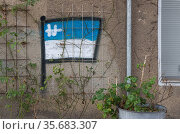 Berlin, Germany - The flag of Hertha BSC on a house wall (2020 год). Редакционное фото, агентство Caro Photoagency / Фотобанк Лори
