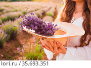 The young woman holding a hat with a bouquet of lavender inside while... Стоковое фото, фотограф Zoonar.com/OKSANA SHUFRYCH / easy Fotostock / Фотобанк Лори