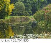 Poland. Pond. Стоковое фото, фотограф Piotr Ciesla / age Fotostock / Фотобанк Лори
