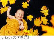 Tiny newborn baby lay in autumn maple leaves. Стоковое фото, фотограф Сергей Новиков / Фотобанк Лори