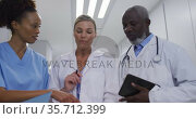 Diverse doctors and medical workers standing in hospital corridor and talking. Стоковое видео, агентство Wavebreak Media / Фотобанк Лори