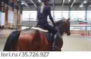 Equestrian - a woman slowly rides a brown horse on an empty arena. Стоковое видео, видеограф Константин Шишкин / Фотобанк Лори