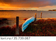 A blue canoe kayak upturned on the sandy shore full of fire sticks... Стоковое фото, фотограф Zoonar.com/Leah-Anne Thompson / age Fotostock / Фотобанк Лори