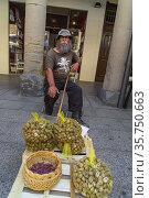 Vendedor recolector de caracoles, mercado al aire libre, Barbastro... Редакционное фото, фотограф Tolo Balaguer / age Fotostock / Фотобанк Лори