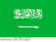 National flag of the Kingdom Saudi Arabia. (2018 год). Редакционное фото, фотограф Peter Probst / age Fotostock / Фотобанк Лори