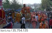 Indian sadhus coming to Kumbh Mela, Royal welcome. Ash covered Sadhus sitting in Camel wearing garland, Appleprores 422 Cinetone 60fps. Редакционное видео, видеограф Devendra Rawat / Фотобанк Лори