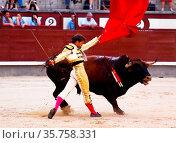 Madrid, Spain - June 25, 2011: Novilladas in Las Ventas. Novillero... Стоковое фото, фотограф Zoonar.com/Matej Kastelic / easy Fotostock / Фотобанк Лори