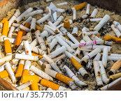 Окурки сигарет в уличной пепельнице. Редакционное фото, фотограф Вячеслав Палес / Фотобанк Лори