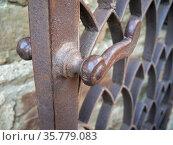 Фрагмент кованой металлической калитки. Редакционное фото, фотограф Вячеслав Палес / Фотобанк Лори