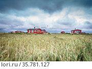 Scandinavian summer cabins in stormy weather. Стоковое фото, фотограф Zoonar.com/Kasper Nymann / age Fotostock / Фотобанк Лори