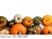 Many orange pumpkins isolated on white background , Halloween concept... Стоковое фото, фотограф Zoonar.com/Ivan Mikhaylov / easy Fotostock / Фотобанк Лори