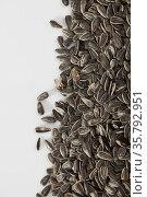 Sunflower black seeds on white background close up, nobody. Стоковое фото, фотограф Яков Филимонов / Фотобанк Лори