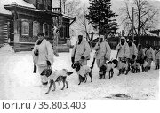 Soviet soldiers with explosives-laden Anti-Tank Dogs. Редакционное фото, агентство World History Archive / Фотобанк Лори