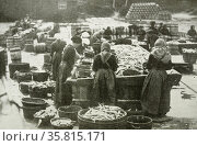 Fishing is a vital industry to Shetlanders. Here the herring is being landed. It will now be cured before sent to market. This job is mainly done by women. Редакционное фото, агентство World History Archive / Фотобанк Лори