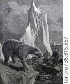 Illustration from a book depicting Captain Ronald Land hunting a polar bear. Редакционное фото, агентство World History Archive / Фотобанк Лори