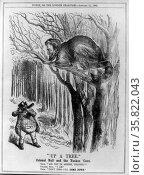 Illustration called Up a Tree 1862.  . Редакционное фото, агентство World History Archive / Фотобанк Лори