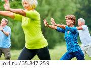 Senioren machen Qi Gong oder Tai Chi Übung für Entspannung und Gesundheit. Стоковое фото, фотограф Zoonar.com/Robert Kneschke / age Fotostock / Фотобанк Лори