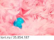 Blaues Osterei liegt zu Ostern in einem Nest aus rosa Federn. Стоковое фото, фотограф Zoonar.com/Robert Kneschke / age Fotostock / Фотобанк Лори