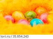 Viele bunte Ostereier liegen zu Ostern in einem Nest aus gelben Federn. Стоковое фото, фотограф Zoonar.com/Robert Kneschke / age Fotostock / Фотобанк Лори