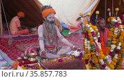 Sadhu or Saint meditating at Largest Indian religious festival Mahakumbh . Appleprores 422 Cinetone 60fps. Редакционное видео, видеограф Devendra Rawat / Фотобанк Лори