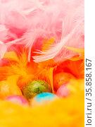 Bunt bemalte Eier liegen zu Ostern in einem Nest aus Federn versteckt. Стоковое фото, фотограф Zoonar.com/Robert Kneschke / age Fotostock / Фотобанк Лори