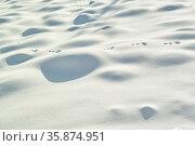 Snowy landscape. Стоковое фото, агентство Ingram Publishing / Фотобанк Лори