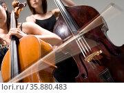 Cello and contrabass. Стоковое фото, агентство Ingram Publishing / Фотобанк Лори