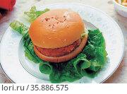 fast food burger. Стоковое фото, агентство Ingram Publishing / Фотобанк Лори